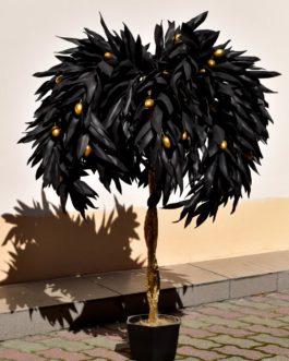Дерево Оливы большое